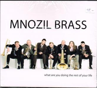 Mnozil Brass what are you doing